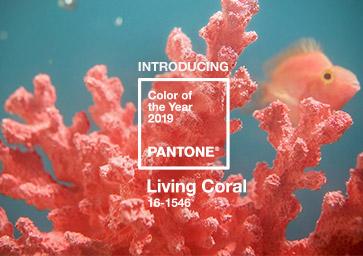 Living Coral: nejvíce trendy barva roku 2019